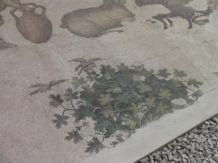 mosaic bush