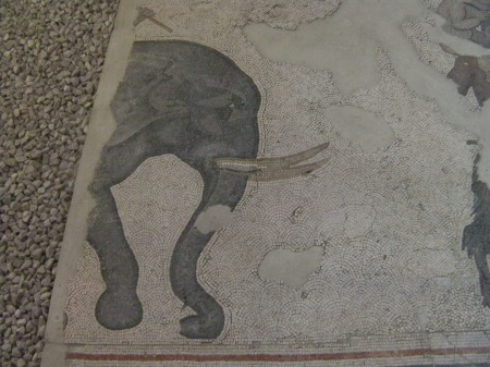 mosaic elephant head and front leg