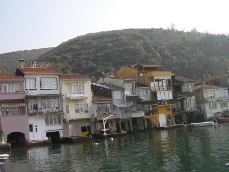houses on the shoreline