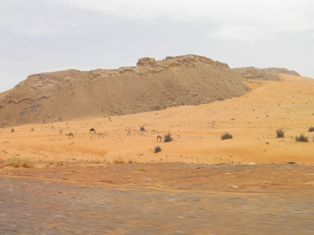 rock formations rising up out of sand dunes