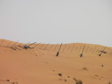 sand dune with fence posts