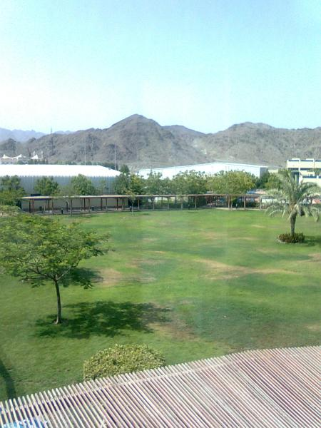 view of green lawn and mountains in background