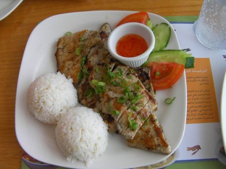 plate of rice and chicken breast
