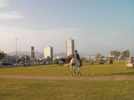 man riding a horse through the park