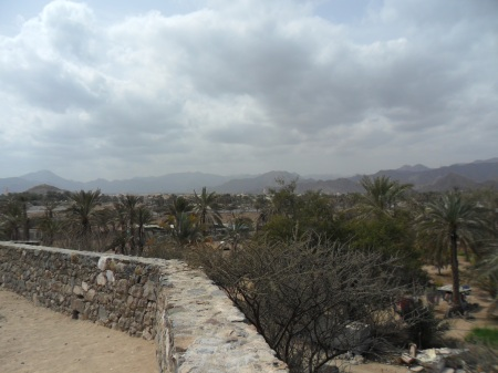 view from the hill above the mosque, palm trees and hills in distance