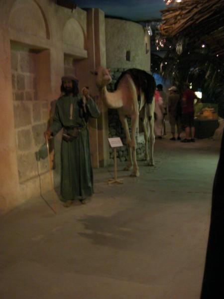 taxodermied camel & manikin