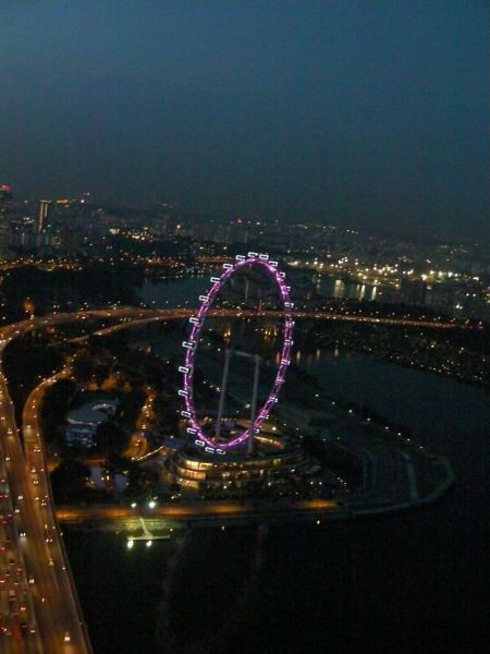 Singapore Flyer ferris wheel lighted at night