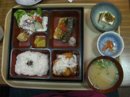 mackerel, breaded chicken, breaded cuttlefish, rice, salad