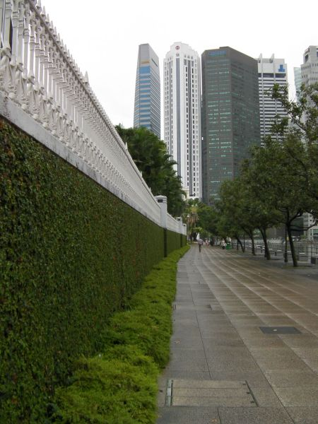 walkway bordered by trees on the right and an ivy covered wall on the left