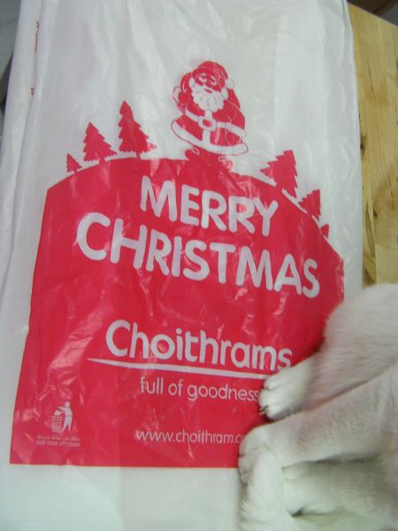 plastic grocery bag printed with Merry Christmas, Santa, and trees