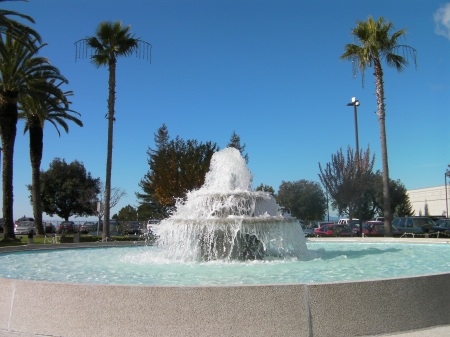 round fountain, palm trees, blue sky