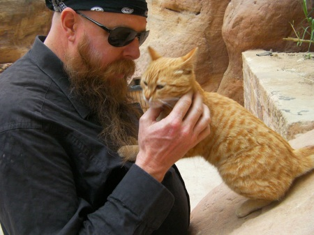 bearded man petting cat