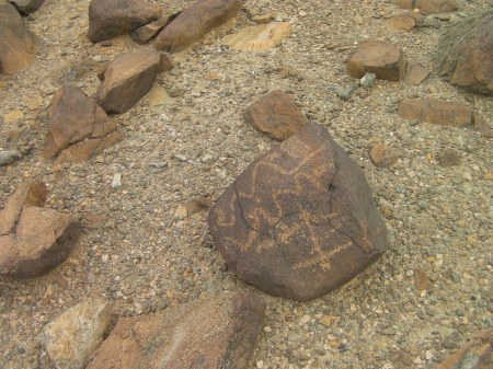 two snake markings on a soccer ball sized rock