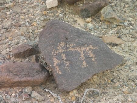camel petroglyph