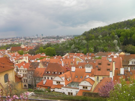 view of rooftops from castle hill