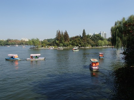 paddle boats on a lake