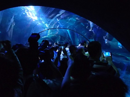 glass tunnel filled with people