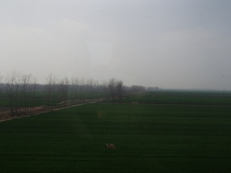 green field with randomly placed conical mounds