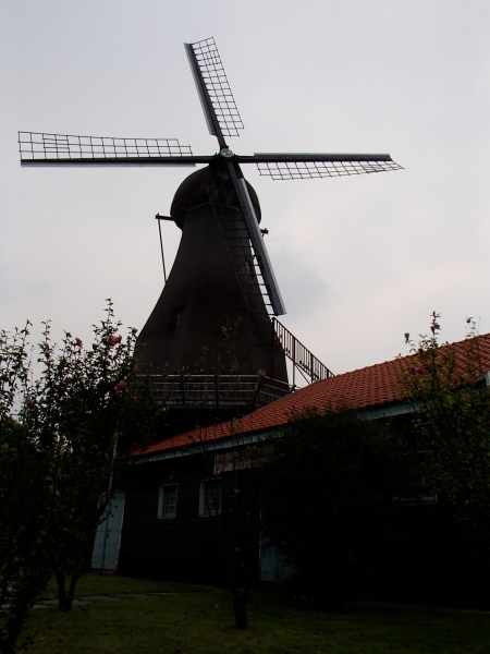 a Dutch style windmill
