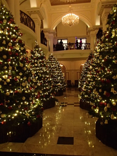 8 large Christmas trees in the hotel lobby