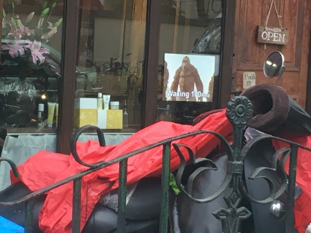 a shop window with a sign for waxing showing a sasquatch